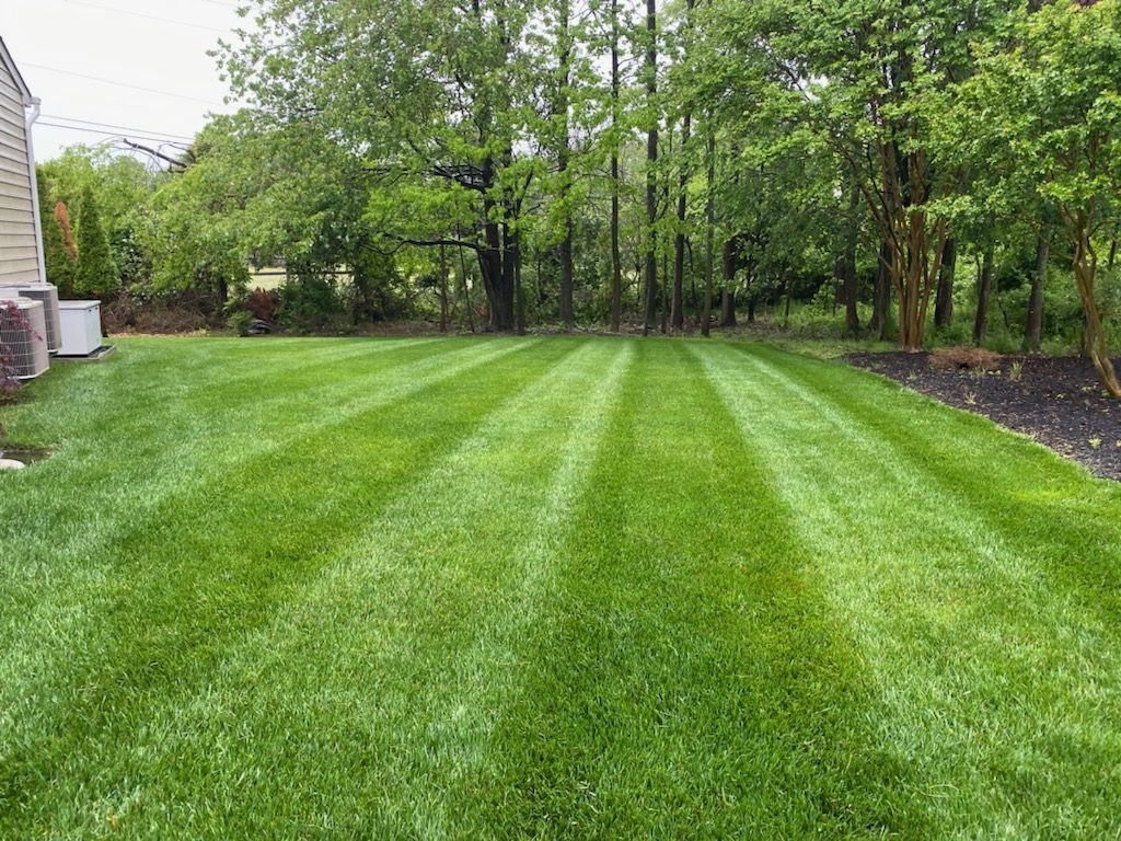 Lawn Services in Bowie, Maryland