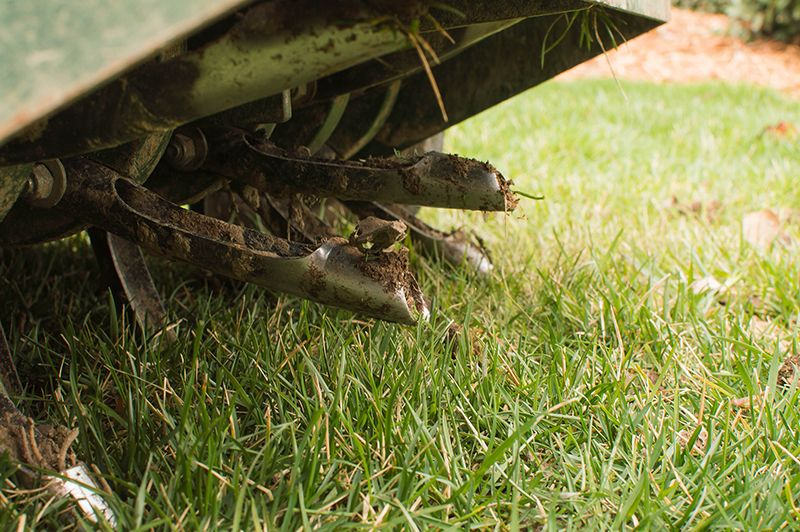 A lawn aerator pulling cores from yard.