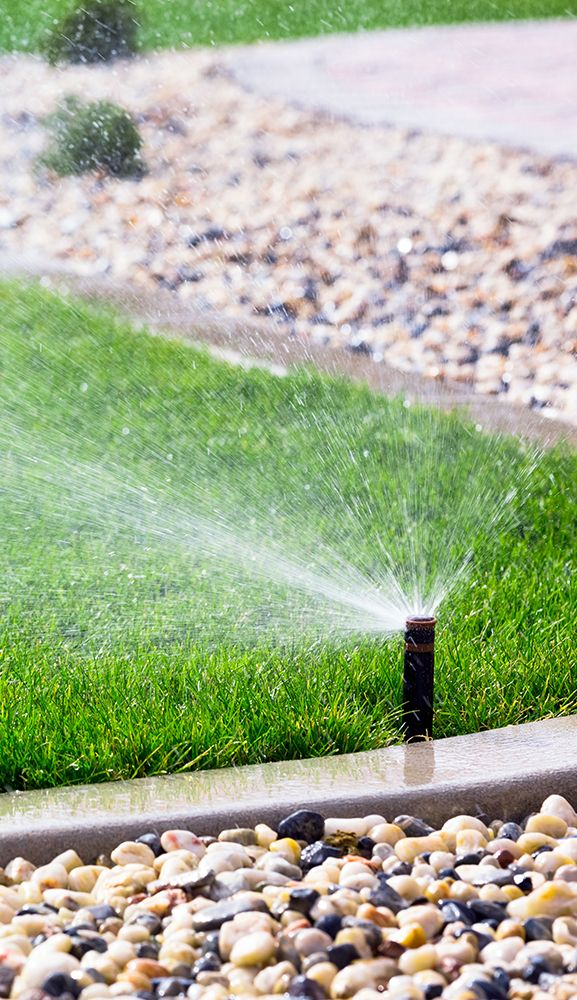 Sprinkler system watering a lawn.